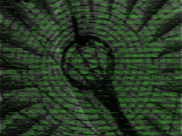 ASCII Network